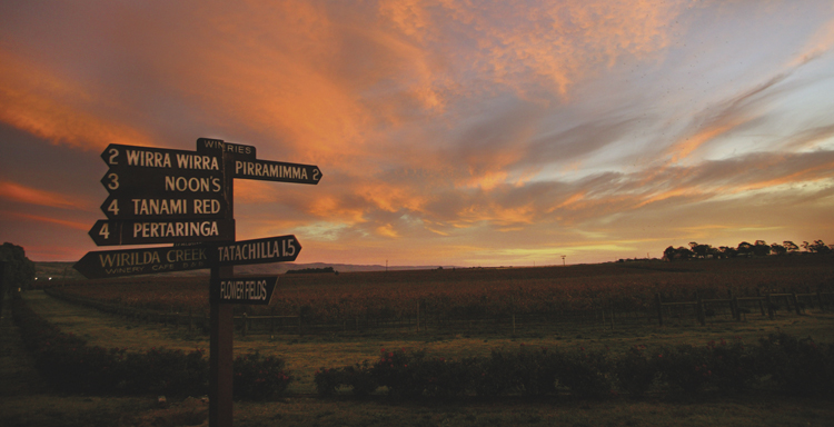 South Australian Winery Signboards in the sunset